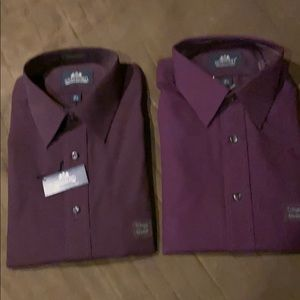 Stanford Button Down Shirts